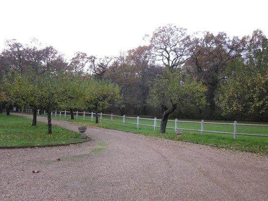 Auberge Forestiere De Marcheroux : driveway