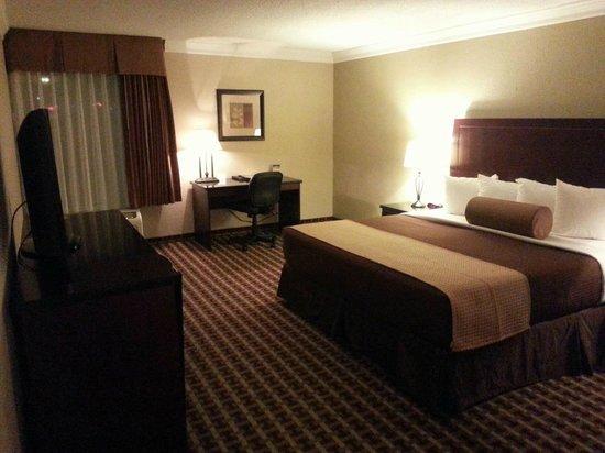 Best Western Johnson City Hotel & Conference Center : Standard King