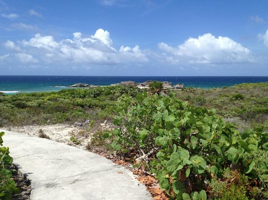 Downtown Providenciales: Entering one of the deserted beaches