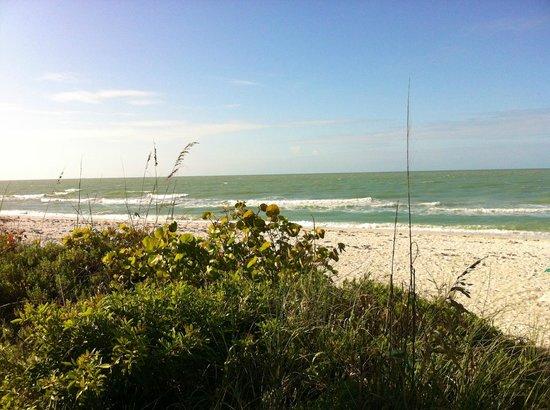 Beachview Cottages: Beach