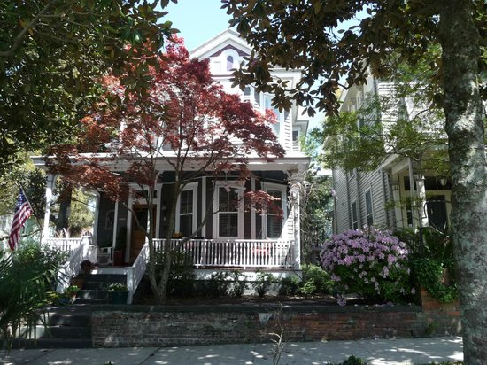 Historic District: love the trees