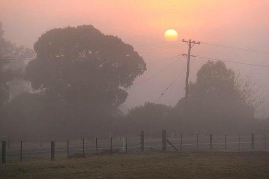 Balloon Aloft Hunter Valley Day Tours : misty morn