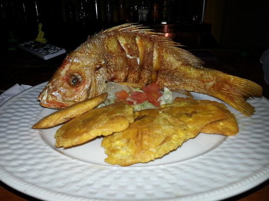 Tropicala Restaurant : Chillo Entero Con Tostones