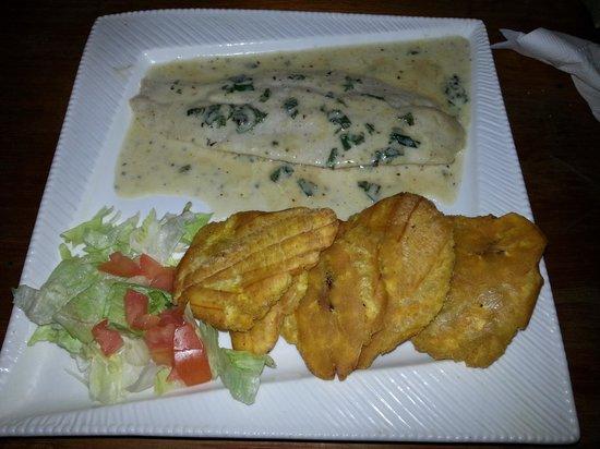 Tropicala Restaurant : Mero En Crema De Ajo Con Tostones