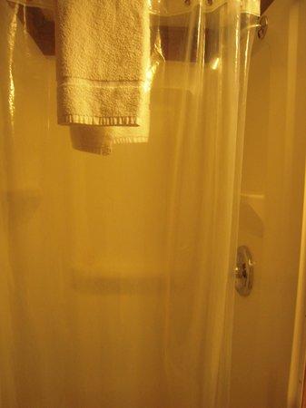 Phoenicia Lodge: shower