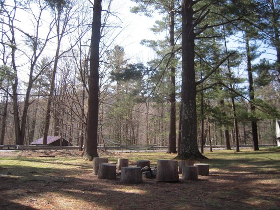 Phoenicia Lodge : fire pit