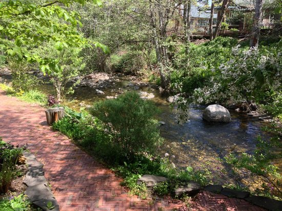 Ashland Creek Inn: Ashland Creek Views