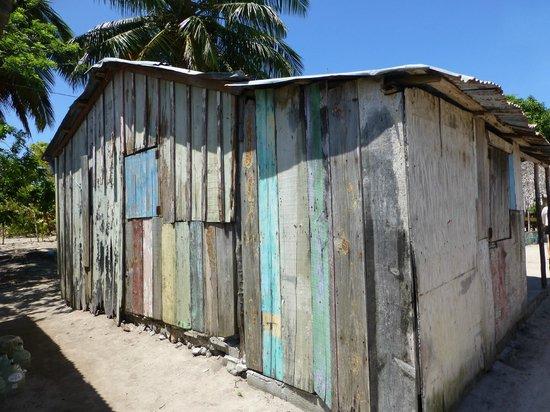 SeavisTours: Mano Juan, Saona Island