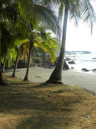 Casa Corcovado Jungle Lodge: Picture of the beach on property