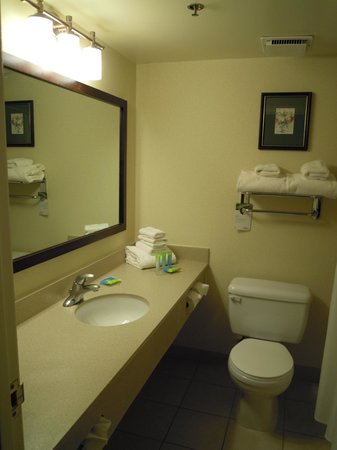 Radisson Hotel Ottawa Parliament Hill: Bathroom with lots of counter space