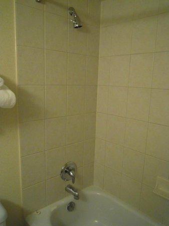 Radisson Hotel Ottawa Parliament Hill : Tub and shower