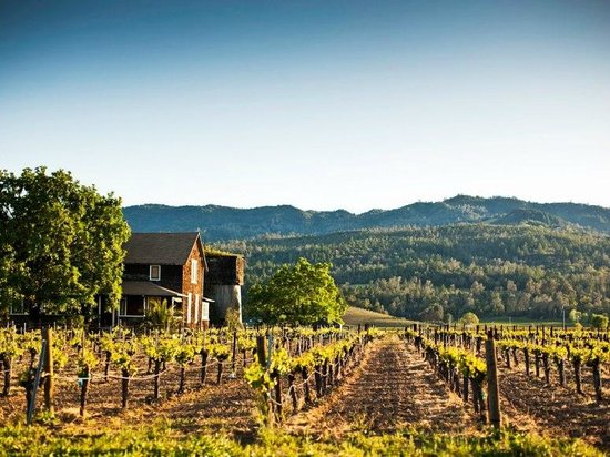 Napa, Californien: Vineyards