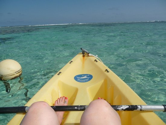Tranquility Bay Resort: Quick kayak ride to world class snorkeling