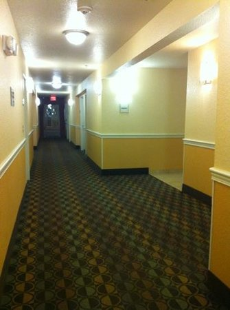 La Quinta Inn & Suites Brandon Jackson Airport E: hall shot