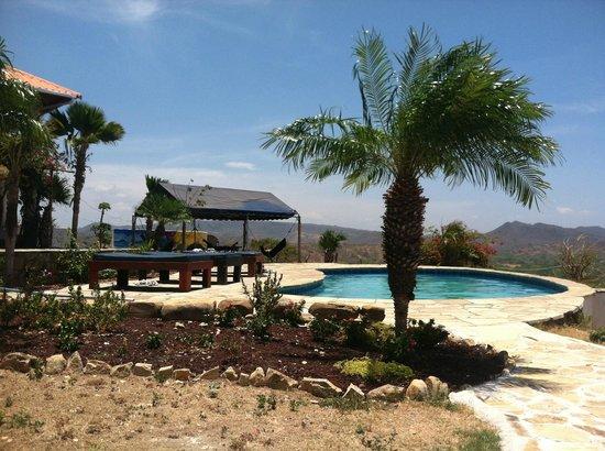 Naked Tiger Hostel : Pool