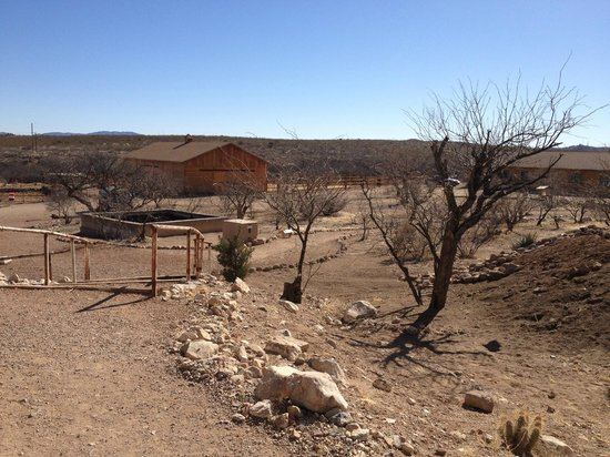 Tombstone Monument Ranch: The view on our way to our car