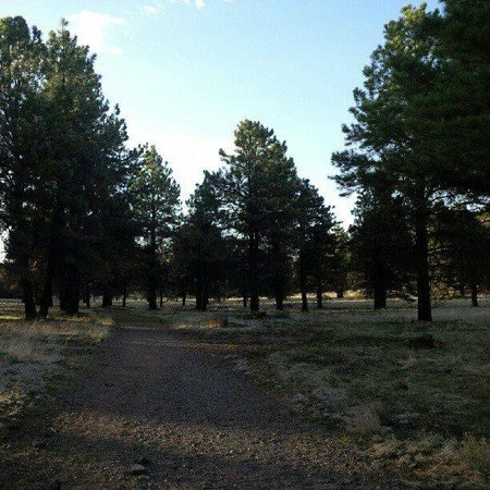 Little America Hotel Flagstaff: Along the nature trail