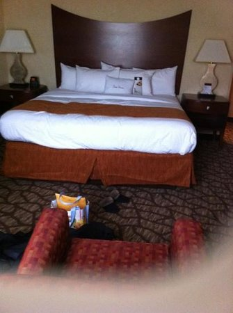 DoubleTree by Hilton Hotel Johnson City: my room