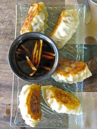 Delicious Onion: Pork Gyoza