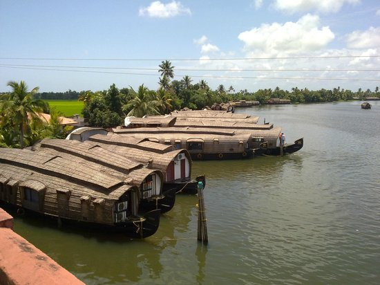 Ashtamudi Homestay: aerial view