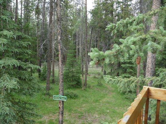 Alpine Village Cabin Resort - Jasper: View from back deck