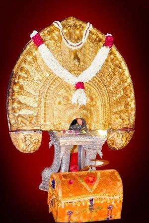 Kumarakom, India: vellayani devi