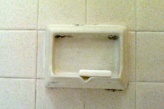 La Quinta Inn Savannah Midtown: Mold growing on soap dish in shower.