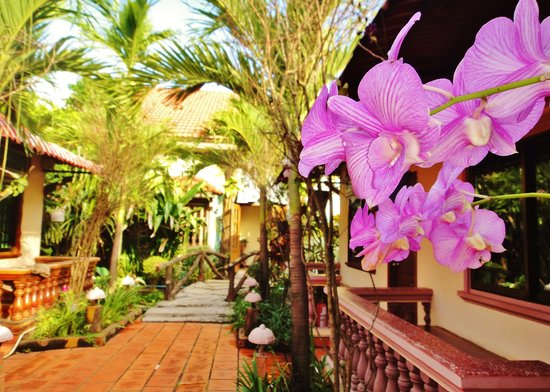Lotus Villa: Walkway to Guestroom