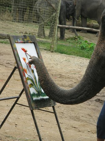 Mae Rim, Thailand: painting the scene