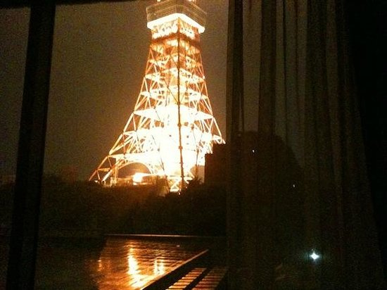 Tokyo Prince Hotel: Tokyo Tower from my room