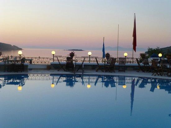Hotel Cactus Fleur: espace piscine fin de journée