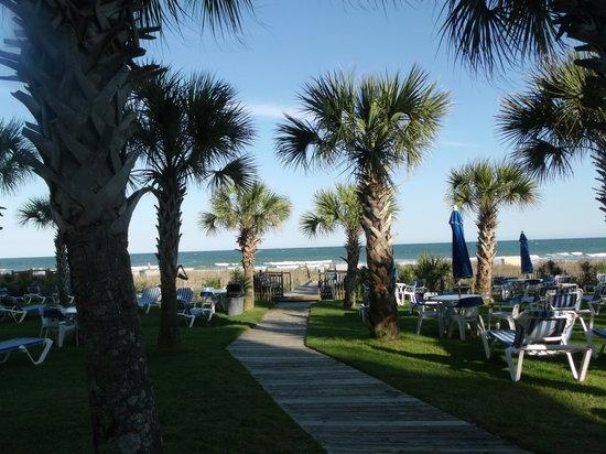 Boardwalk Beach Resort: The picnic area