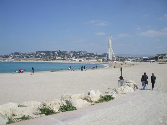 Plage de la pointe rouge marseille ce qu 39 il faut for Piscine marseille pointe rouge