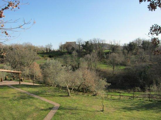 Villaggio Le Querce: Il panorama
