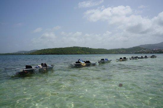 Fleurdo Eco-Excursion: kayak à l'arrêt