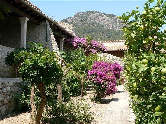 Can Furios Hotel: Garden