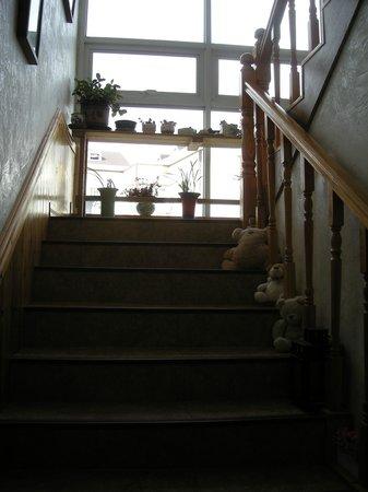Bellus Rose Pension Hotel: Stairway up to 1st floor
