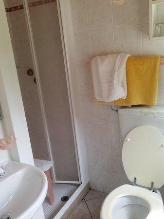 Hotel San Giorgio: bagno