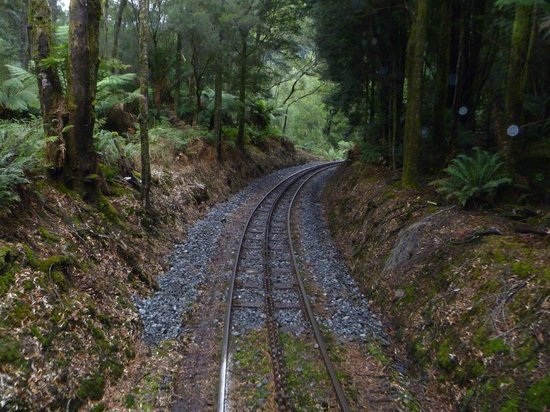 West Coast Wilderness Railway: The Wilderness Rail