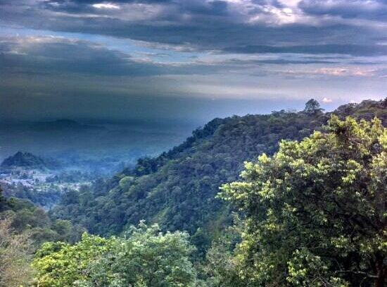 North Sumatra, إندونيسيا: on the way to lake toba
