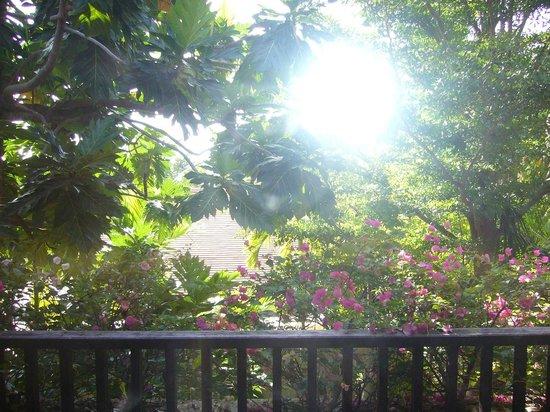 New Star Beach Resort: our Garden view room :)