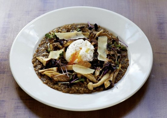 The Pembroke Arms Hotel: Mushroom risotto
