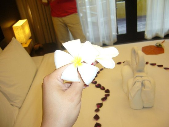 New Star Beach Resort: the scent of our room was always charming!