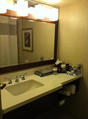 Atlanta Marriott Perimeter Center: Nice bathroom with quartz countertop and up-to-date fixtures.