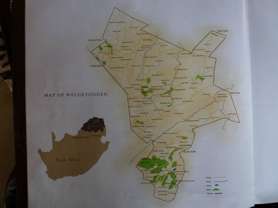 Map of welgevonden game reserve picture of wild ivory eco lodge wild ivory eco lodge map of welgevonden game reserve gumiabroncs Image collections