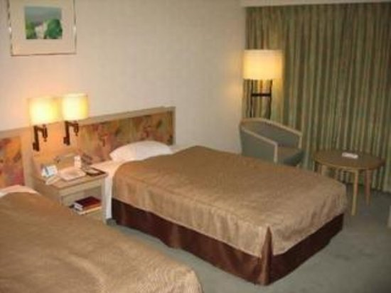 Nikko Palace Hotel Ota
