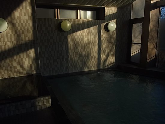 Fuji Marriott Hotel Lake Yamanaka : 風呂