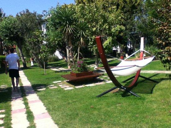 Gaia Garden: hotel grounds