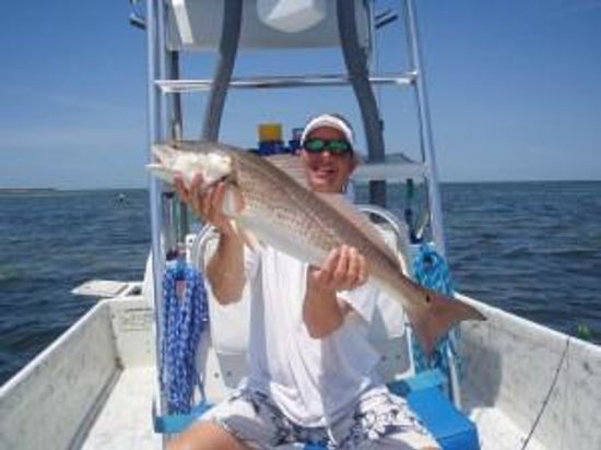 Tampa fishing charters all you need to know before you for Tampa fishing charters