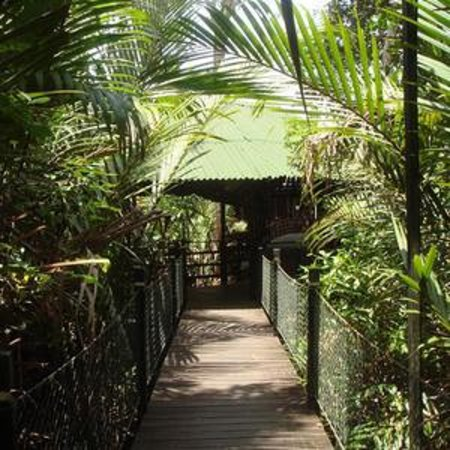Foto de Nipah Lodge
